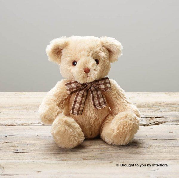 James Junior Bear