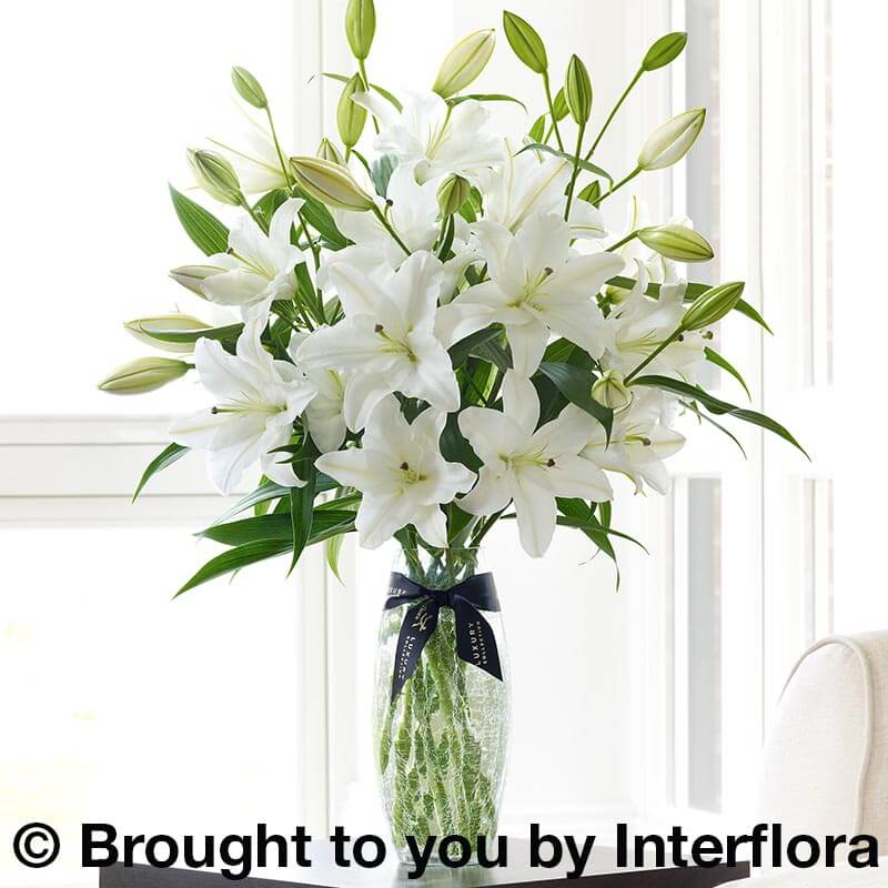 Vase of white scented lilies