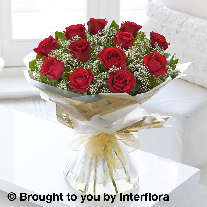 12 red roses with gypsophila