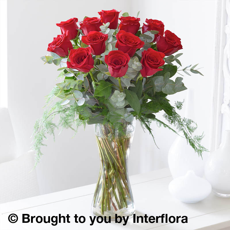 vase of 12 red roses