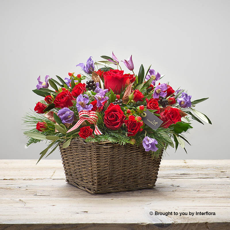 cosy crimson basket of flowers