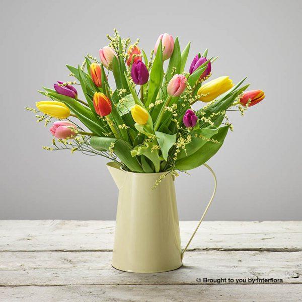 Jug of mixed tulips